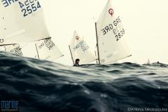 sailing_optimist_race